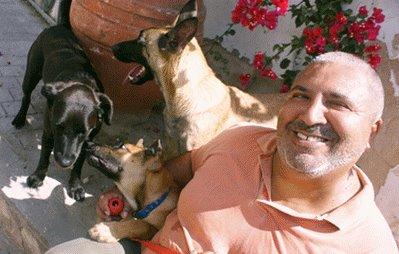 אילוף כלבים לאיכות חיים - מנוחי לוי