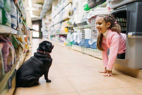 חנות בעלי חיים איננה כשמה!
