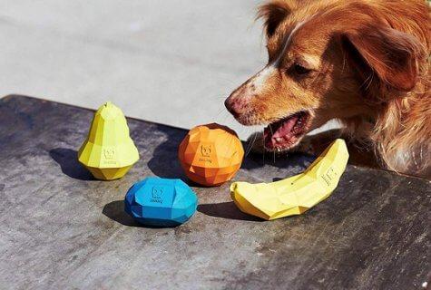 המוצרים החמים והחכמים לכלבים - קיץ 2020