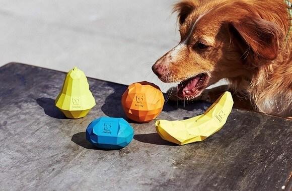 צעצועים בצורת פירות גומי לכלבים