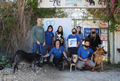 למען בעלי חיים - רויאל קנין תתרום אלפי ערכות אימוץ לעמותות השונות