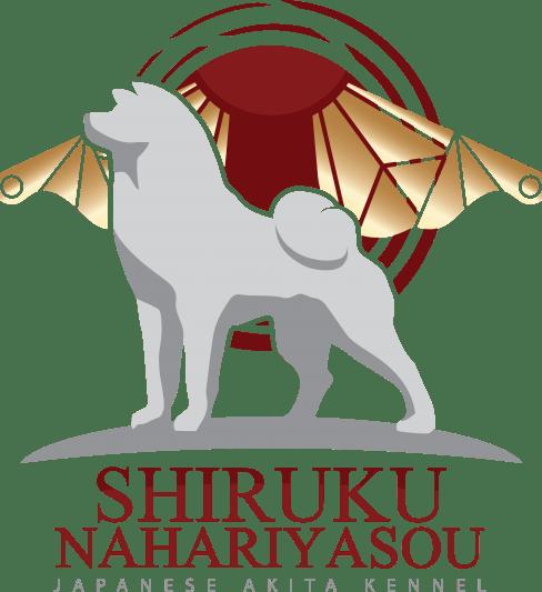 שירוקו נהרייה סו Shiruku Nahariyasou אקיטה אינו